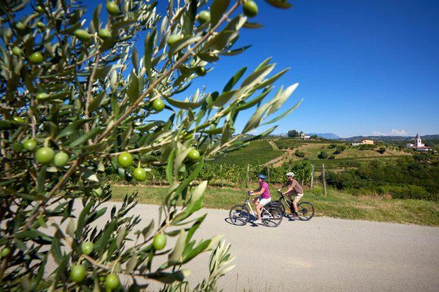 kolesarski-izleti-za-skupine