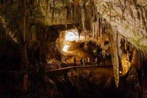 postojnsa-cave-day-tour-from-ljubljana