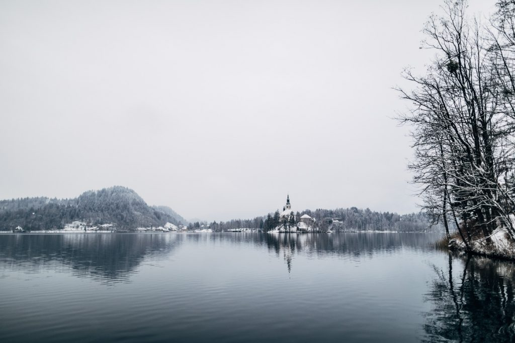 lake bled winter destination slovenia mice