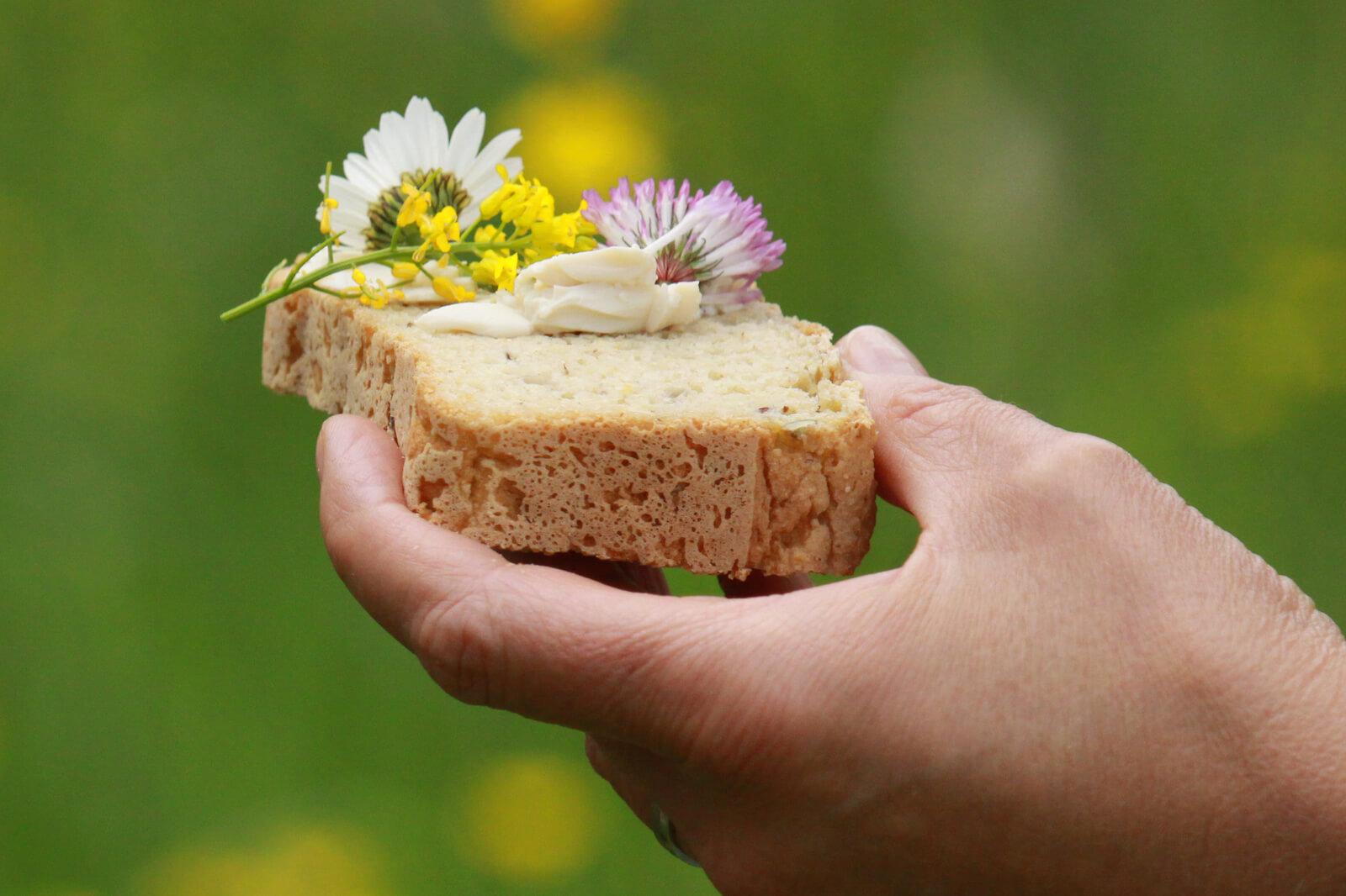 slovenia organic delicacies