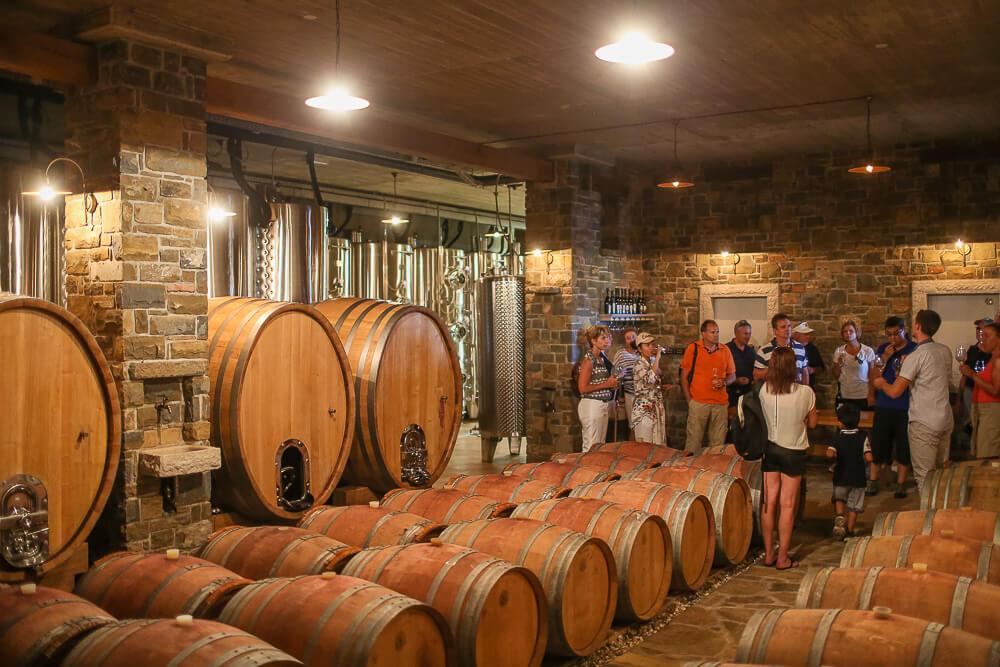 wine cellar visit shorex koper